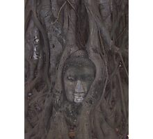 Carved Budda Photographic Print