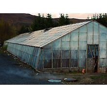 Geothermal Horticulture Photographic Print