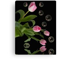 Floating Mirrors Canvas Print
