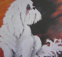 HARVEY oil on canvas by Shauna  Noble