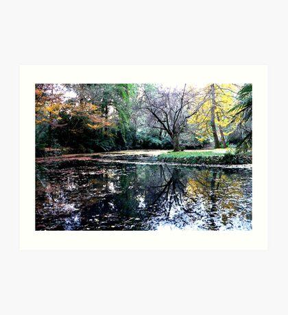 Autumn at Alfred Nicholas Gardens  Art Print