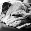 Sleeping Beauty by brotbackgeraet