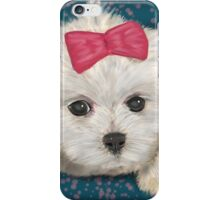 Cute Maltese Dog with Creme Fur and Red Ribbon iPhone Case/Skin