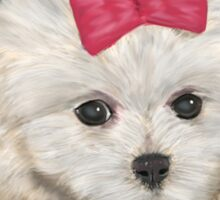 Cute Maltese Dog with Creme Fur and Red Ribbon Sticker