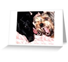 Pillow Squack Greeting Card