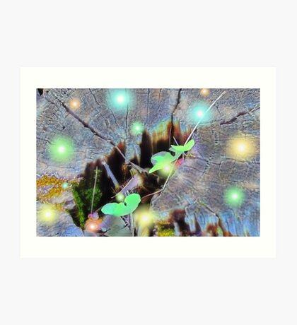 Fireflies Village Art Print