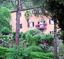 Author's Retreat-Cortona-Italy by Deborah Downes