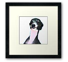 Kermit Dogboy Framed Print