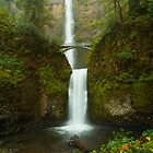 Multnomah Falls by Brandt Campbell