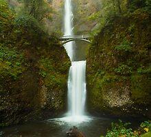 Multnomah Falls by Brandt Campbell