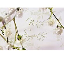Baby's Breath Macro - With Sympathy Card Photographic Print