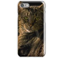 It's Good to be King iPhone Case/Skin