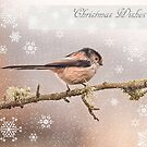 Christmas Wishes by M.S. Photography/Art