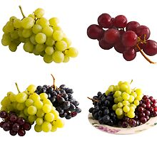 Fresh Isolated Grapes by travis manley