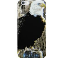 The Mighty Eagle Perches Patiently (1422115986pcVA) iPhone Case/Skin