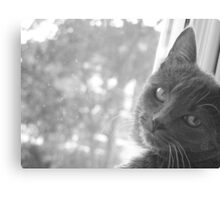 Watching me, watching you Canvas Print