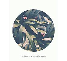 Art Print - We live in a beautiful world -Photo and Quote- Typography Photographic Print