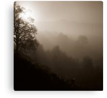 Sepia Mist Canvas Print
