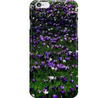 Kew Crocus iPhone Case/Skin