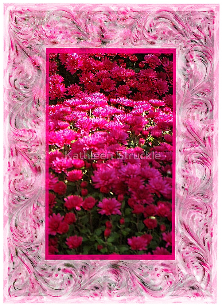 Pink Mums by Kathleen Struckle