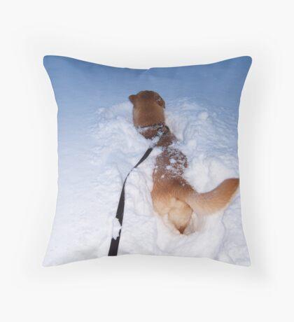 Snow bath Throw Pillow