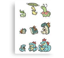 2nd gen pokemon cute starters Canvas Print