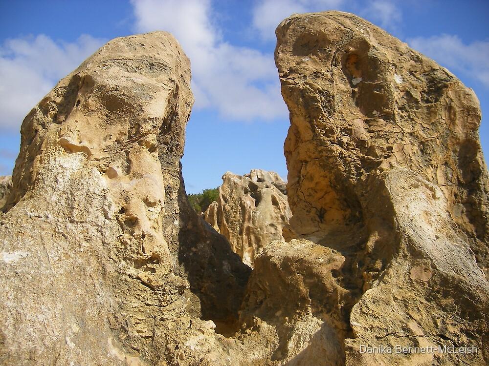 Pinnacles by Danika & Scott Bennett-McLeish
