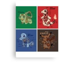 pokemon starters anatomy Canvas Print