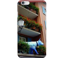 Quaint Swiss Window Box  iPhone Case/Skin