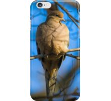 Fall Afternoon iPhone Case/Skin