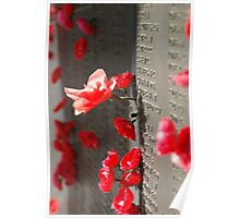 Poppies on the Memorial War (1) Poster