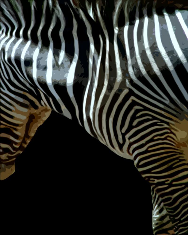 Essence of zebra by pelmof
