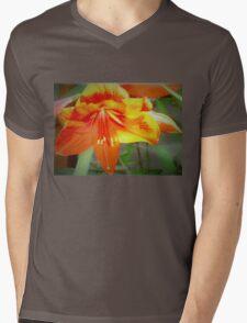 Merry amaryllis Mens V-Neck T-Shirt