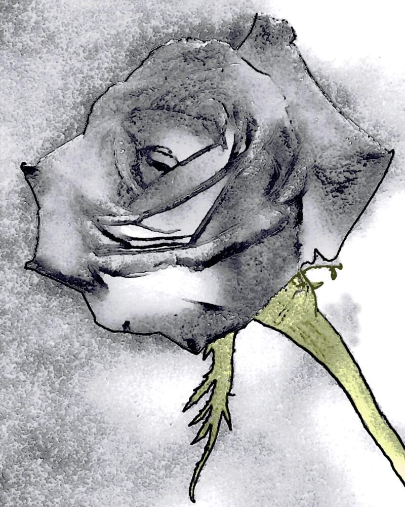 Distressed rose by pelmof