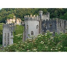 Gwrych Castle 2 Photographic Print