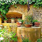 A Private Garden....................................Majorca by Fara