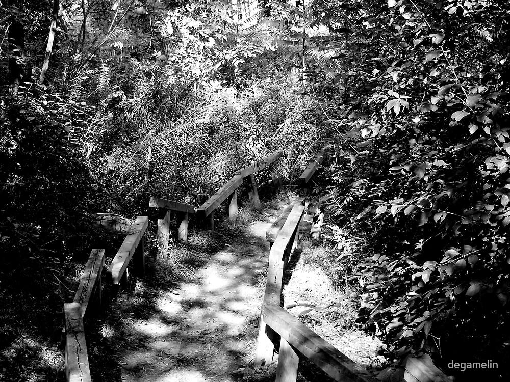 follow me somewhere by degamelin