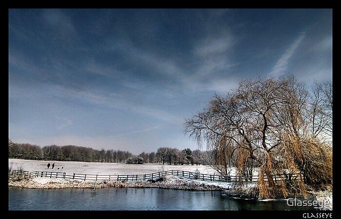 Willian Pond by Glasseye