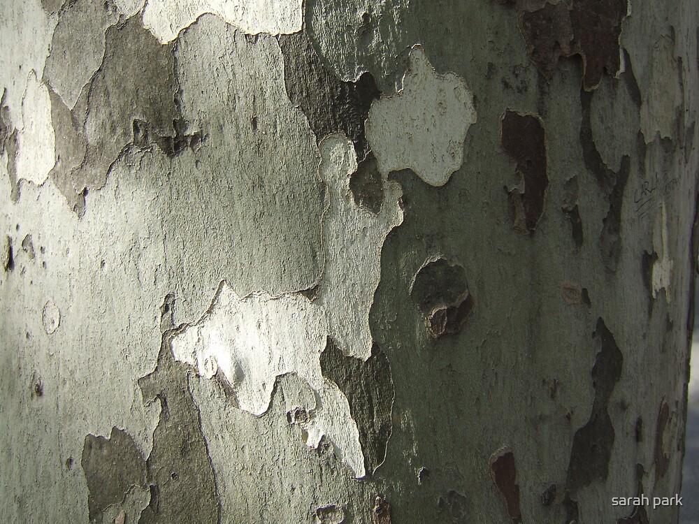 bark by sarahcro123