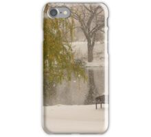 Winter at the duck pond - Colorado Springs iPhone Case/Skin