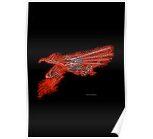 Fire Dragon On Black Poster