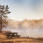 Foggy Morning by Yelena Rozov
