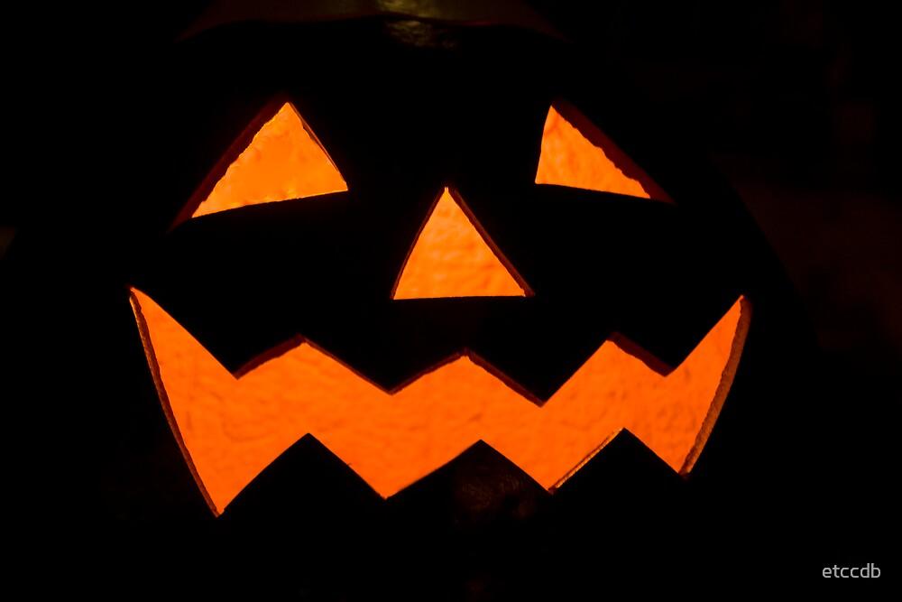 pumpkin by etccdb
