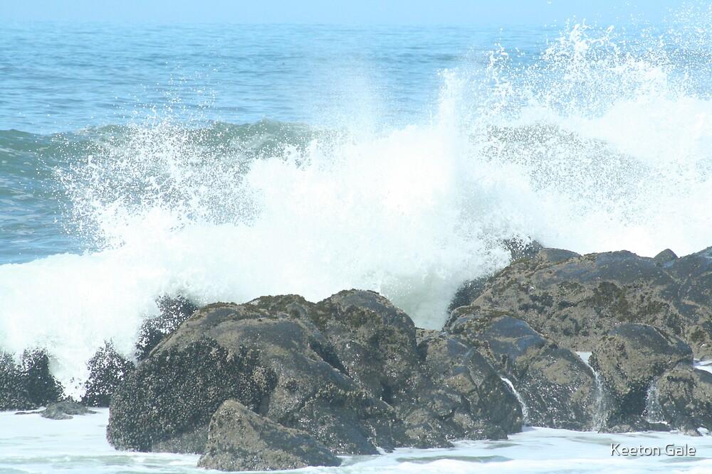 Oregon Coast by Keeton Gale