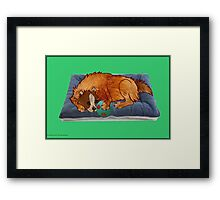 A relaxed dog [691 views] Framed Print