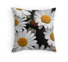 Daisy Days Throw Pillow