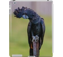 Red-tailed Black Cockatoo iPad Case/Skin