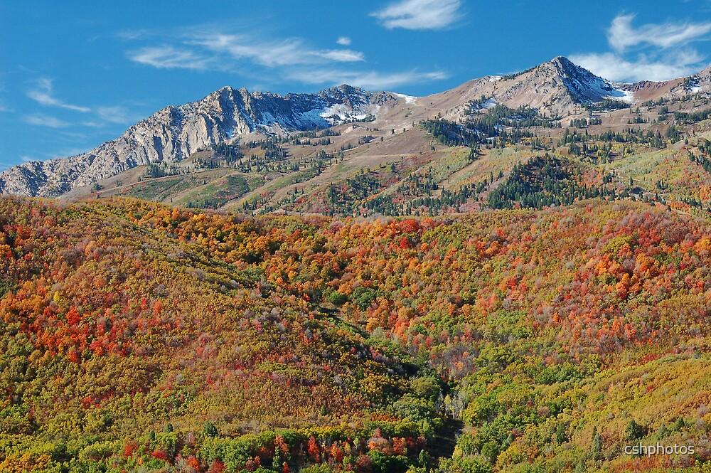 Mountain Landscape by cshphotos