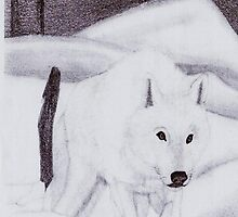 White Wolf (pencil) by Deborah Duvall