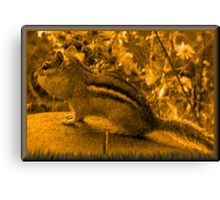 Painting of a Chipmunk  Canvas Print